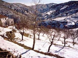 Casa Rural La Albaida