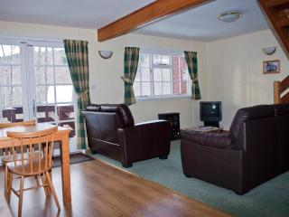 The Lodge's open plan living with Sky TV, leather seating and stove heating.