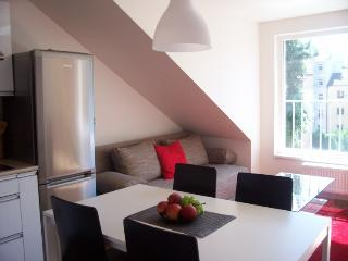Loft Ap 12min from city centre, Praga