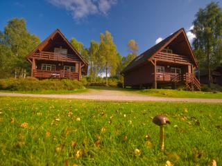 Tomich Holidays Woodland Lodges (sleep 6) with seasonal pool.