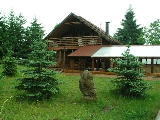 Villa Plitvice in national park with pool, Plitvica