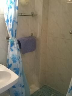 the spacious bathroom with shower