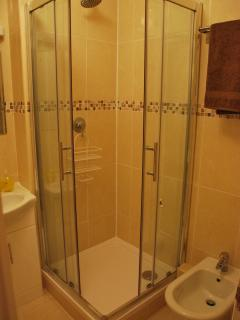 New shower and bidet