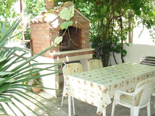 garden with terace and barbecue