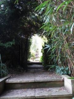 Path down from bottom lawn to the river Wye (garden is  fenced to stop average dogs escaping!)