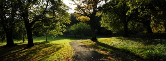 Pittencrieff Park, a lovely place for a walk - remember to take nuts for the squirrels