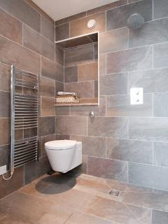 Wetroom with wall hung toilet