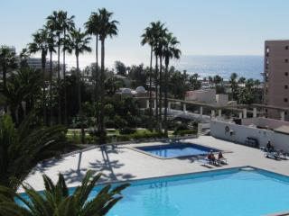 Apartment Vina del Mar,1 bdr