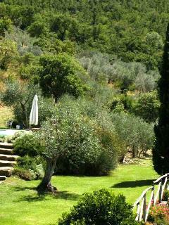 a garden level