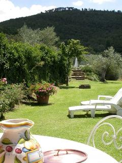 the garden from the house pregola