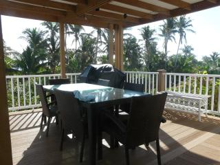 Covered deck with gas grill and alfresco dining