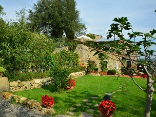 Delicious country house in Chianti  2