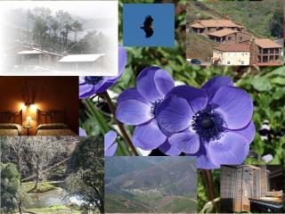 Ramajal Rural 1, Pinofranqueado