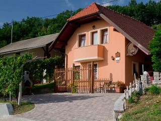 Vineyard cottage - Zidanica Tramte
