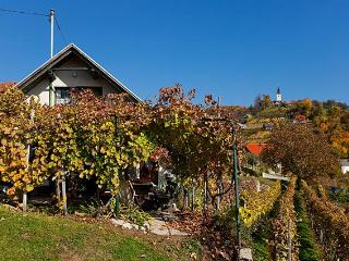 Vineyard cottage - Zidanica Vercek