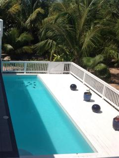 Private 9000 gallon Pool with surrounding tropical gardens