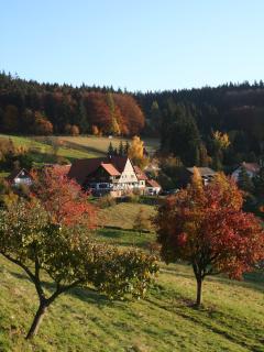 Glockelshof, former Black Forest farm next to apartment