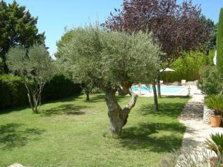 Les cigales, Carnoux-en-Provence