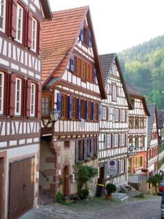 Excursion - A typical village in the Black Forest.