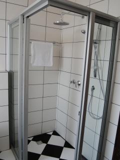 Master bedroom ensuite bathroom w/big shower