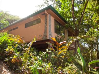 Casa Macaw, Rain Forest Gem! Walk To Town, Manuel Antonio National Park