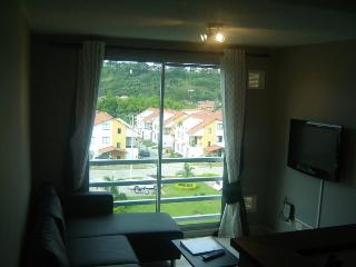 PEREIRA 1bed/1bath furnished condo