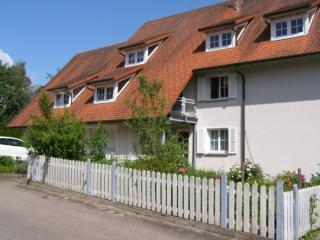 Vacation Apartment in Villingen-Schwenningen - 700 sqft, quiet, cozy, modern (# 3875)