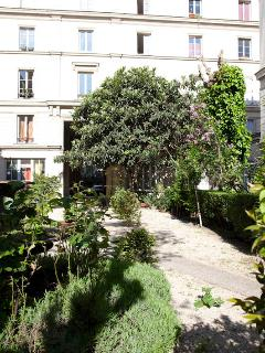 The studio overview a charming courtyard with trees anf flowers, rare in Paris !