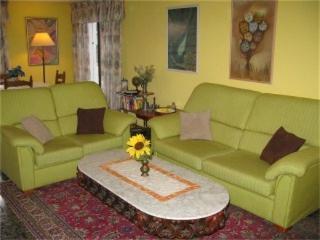 The salon has two sofas