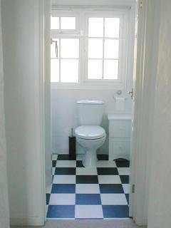 Shower, Sink, WC