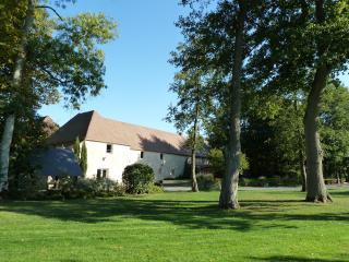 Domaine de la Tour, Falaise