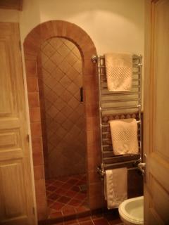 Master bath has italian shower and towel warmer