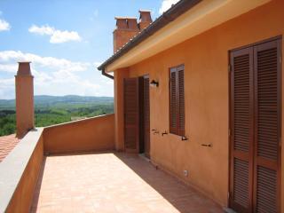 Le Caiole - Fico / Fig. The terrace