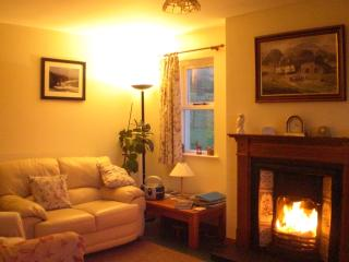 Relax in the cosy lounge on a winter evening