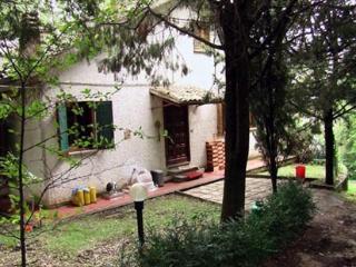La casa nel bosco, Montecastrilli
