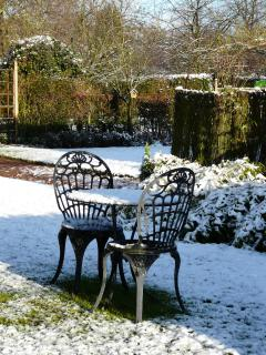 The garden in the winter