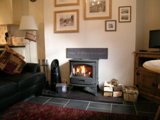Beautiful and cosy Tiger multi fuel wood burning stove