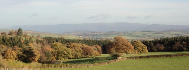 Autumn view from Cottages