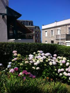 Le jardin, ses hortensias et l'hôtel du palais en toile de fond.