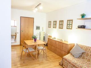 Lovely miniflat close to St.Peter's, Rome
