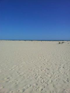 Armona Beach