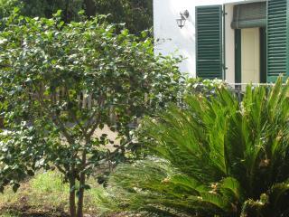 La casa di Palombaro (house)