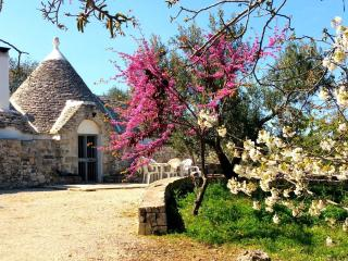 Trullo Salice Holiday Home, Ceglie Messapica