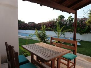 The terrace overlooking the pool and garden.