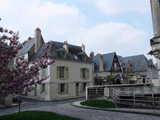 Villaconcorde-unique townhouse, Amboise