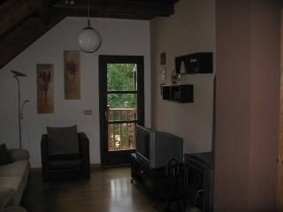 apartamentos Castillo, Parzan