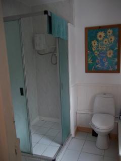 Modern Shower En Suite