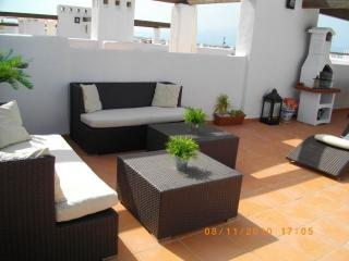 Huge 50m private rooftop solarium with bbq, dining table, loungers and sofas