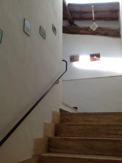 The access ladder