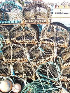 Fresh Fish locally